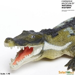 Deinosuchus  (Ancient Crocodile)<br><b>1/3 Off!!</b>