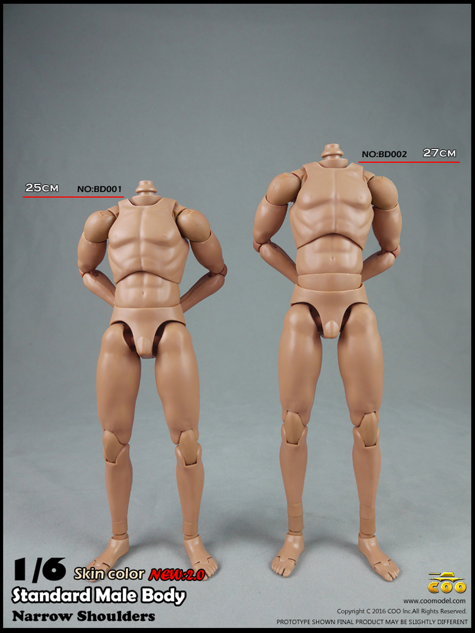 Flesh Colour Narrow Shoulder and Muscle 1//6 Action Figure Male Body Version 4.0