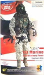 Alden: 1st Marine Expeditionary Force Southern Iraq 2003