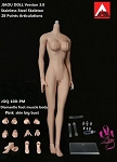 Female Seamless Body<BR>(Pink Skin/Large Bust Size)