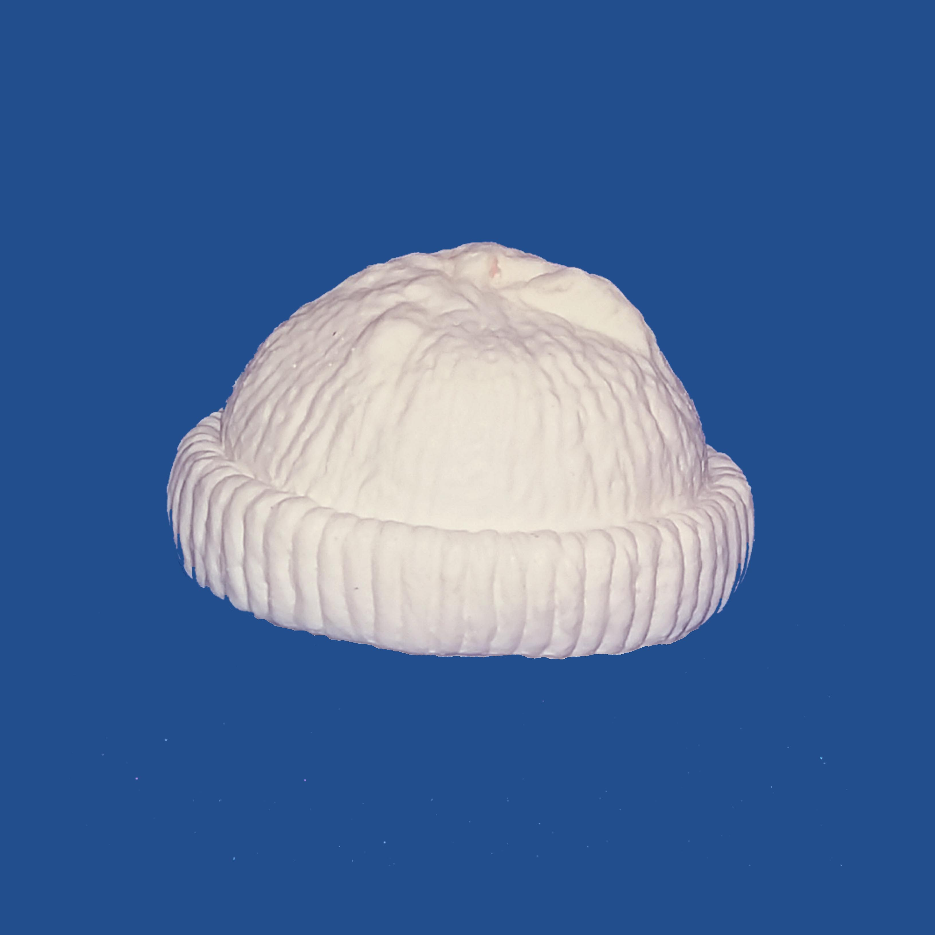 Stocking Cap (White)