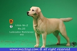 Labrador Retriever (Yellow)<BR>PRE-ORDER: ETA Nov. 2018