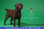 Labrador Retriever (Chocolate)<BR>PRE-ORDER: ETA Nov. 2018