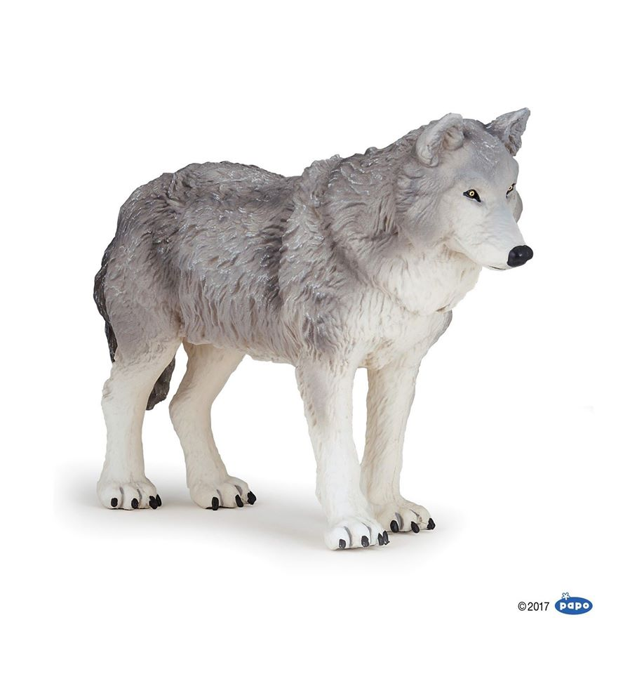 Large Wolf