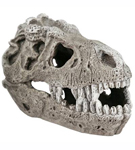 T-Rex Fossil Skull (small)<br><b>1/3 Off!</b>