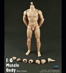 Muscular Male Body<BR>(9.8-inch. Tall)