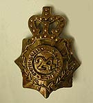 British 24th of Foot Cap Badge