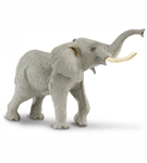 African Elephant**<BR>