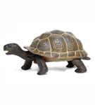 Galapagos Baby Tortoise**<BR>