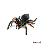 Giant Orange-Kneed Tarantula<BR>