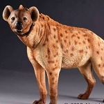 Spotted Hyena (Light Brown)<BR>PRE-ORDER: ETA Q4 2018