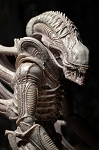 ALIENS Series 9 <BR>Albino Alien<BR>(1:10 Scale)