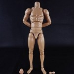 Standard Body- Muscle Arm (Movable Neck/Tall)