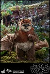 Star War Series: Wicket<BR>PRE-ORDER: ETA Q3 2020