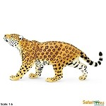 Jaguar<br><b>25% Off!!</b>