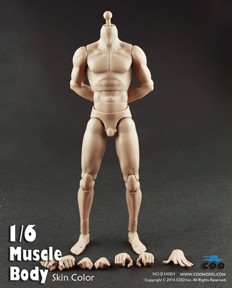 Muscular Male Body (10.6-inch. Tall)