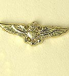 U.S. Navy/ USMC Pilot Wings