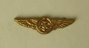 U.S. Navy/USMC Aircrew Wings