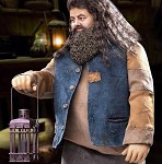 Harry Potter Series<BR>Rubeus Hagrid 2.0
