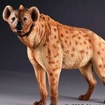 Spotted Hyena (Light Brown)
