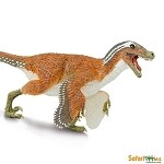 Feathered Velociraptor